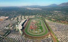 Hollywood park early bird betting santa anita animal racing betting games