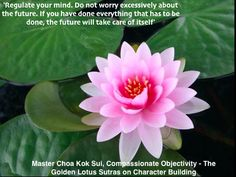Master Choa Kok Sui, Compassionate Objectivity - #TheGoldenLotusSutras on Character Building