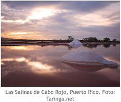 Puerto Rico. Las Salinas de Cabo Rojo