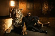 Idris Elba - voice of Shere Khan in Jungle Book. Perfect voice pick.