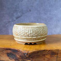 Round Bonsai Pot Handmade With Random Texture in Tan Glaze. | Etsy