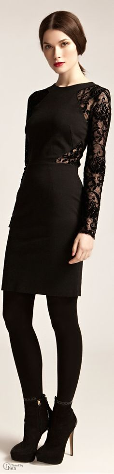 Lace details - ALICE by Temperley  ● Fall 2013