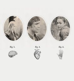 The head, the heart and the hands || The 100 || Clarke Griffin, Bellamy Blake and Raven Reyes || Bravenlarke || Eliza Jane Taylor, Bob Morley and Lindsey Morgan