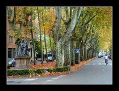El Passeig de Barcelona d. Olot , ( La Garrotxa ) , a la tardor