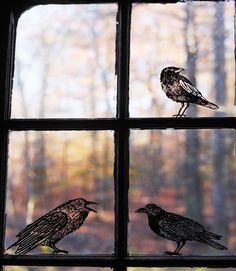 Creating these avian silhouettes is wicked easy: Simply download our images and print them on static-cling window decal sheets. Cut out the bird shapes, stick them onto windowpanes, and smooth out any air bubbles.  #halloween #projects