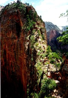 Angels Landing, Zions.... Crazy crazy hike. But Awesome!
