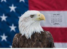 Feeling patriotic? Enjoy this July desktop calendar, free from Duncraft.com