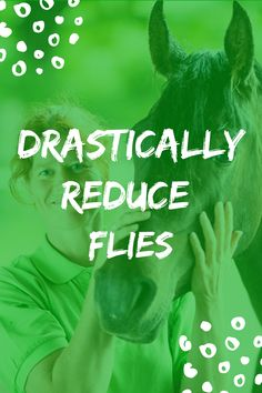 Use our Secret Weapon to Fight Flies this Upcoming Season! Get Rid Of Flies, Fly Traps, What To Use, Outdoor Areas, Weapon, Weapons, Gun, Firearms
