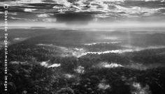 by sebastião salgado A Reserva Biológica Gurupi foi criada em 1961 por Janio Quadros com 1,6 milhão de hectares. Nesses 52 anos, os limites foram reduzidos, mas a área é duplamente protegida por ser reserva e Terra Indígena Foto: Agência O Globo