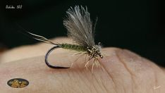 Mayfly #mayfly #flytying #flyfishing #flytyingjunkie #flugbindning #flugfiskeinorden #flugfiske #flue #flytyingaddict #fluefiske #fluebindning  #fliegenbinden #deercreekresin #semperfliflytying #dohikuhooks #mayflymafia #dagslända #troutfood #troutline #graylingfly #tiemco