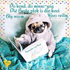 Night Wishes, Good Morning Wishes, Lekker Dag, Afrikaanse Quotes, Good Night Blessings, Goeie Nag, Goeie More, Good Night Image, Special Quotes