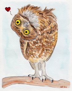 Owl Loves you by IckyDog on DeviantArt 8x10 Watercolor and ink