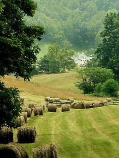 New Country Landscape Photography Farms Hay Bales 50 Ideas Country Farm, Country Life, Country Living, Country Style, Country Roads, The Farm, Country Landscaping, Landscaping Jobs, Landscaping Design
