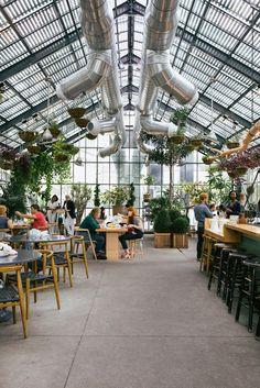Cafe design, clean, open, plants