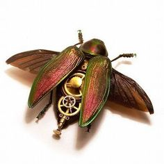 Steampunk Bugs by Mike Libby