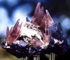 A Mexican classic! Amethyst clusters on Galena with Quartz drusy! This specimen came from a small pocket found in the 1960's in Naica, Mexico. I can honestly say that I've never seen a specimen of this combination before and it caught my eye immediately when I found it! The Amethyst crystals are all terminated and perfect. They sit atop a matrix of lustrous Galena with a scattering of smaller Quartz points and drusy which adds further contrast to this very aesthetic specimen. Measures 7.5 cm…