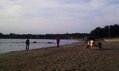 Playa en Tallin city