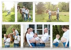 silke brenner photographie :: Tierisches Familienshooting mit Babybauch