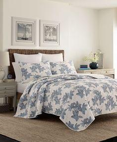 13 Best Beds Adjustable Mattresses Images Adjustable Beds Bed