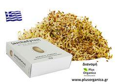 Βιολογικό φύτρο άλφαλφα (Medicago sativa - Μηδική η ήμερος) Ιδιαίτερα οφέλη του φύτρου άλφαλφα: Έχει υψηλή περιεκτικότητα σε πρωτεΐνη και σε βιταμίνη Κ η οποία συμβάλλει στην διατήρηση της φυσιολογικής κατάστασης των οστών). Προϊόν βιολογικής γεωργίας Προέλευση Ελλάδα http://www.plusorganica.gr/proionta/phytres/phytres-biologikes-kalliergeias-archephytro/phytro-alfalfa-biologiko-archephytro