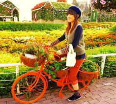 The urban bicycles with flowers were very popular among the female visitors of the Dubai Miracle Garden. Petunia Flower, Geranium Flower, Million Flowers, Miracle Garden, Floral Theme, Large Flowers, Go Green, Geraniums, Bicycles