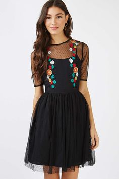 **Floral Embroidered Mesh Skater Dress by Glamorous