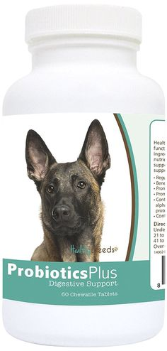 Healthy Breeds Probiotic Plus Digestive Support Chewables,  Belgian Malinois  / 60 Count ** For more information, visit image link. (This is an affiliate link and I receive a commission for the sales)