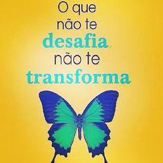 """""""O que não te desafia não te transforma"""".  #mentesprosperas #prospermindintelligence #projetodevida #renatohirata"""