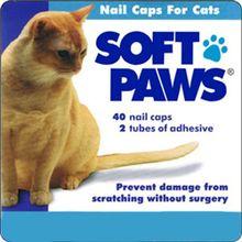 Soft Paws® Feline (Kitten)