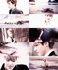 EXO starring in fairytales→ Kris as prince Eric ( The Little Mermaid )