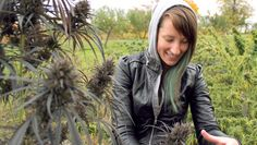 The Miss Adventures Of A Girl On An All-Male Grow :: PROHBTD