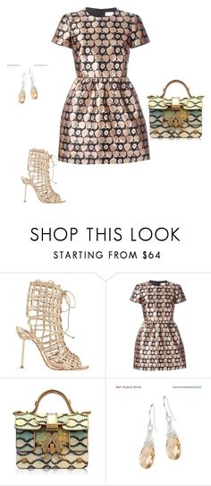 """""""Untitled #13824"""" by explorer-14576312872 ❤ liked on Polyvore featuring Sophia Webster, RED Valentino, Giancarlo Petriglia and YooLa"""