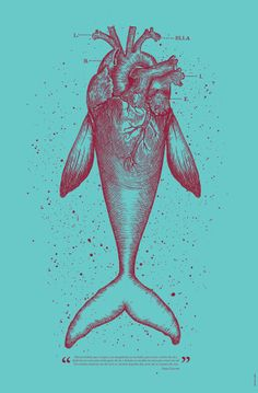 Fish #heart