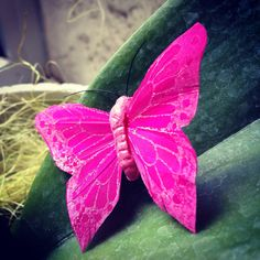 #butterfly #plante #forme #coaching #image #deco #design #lifestyle #formationcoach #deco #color #pink #instacool #instalike #instafallow #instablogger #blogger #bloggerstyle #look #style #inspiration #entrepreneur #blog #wellness #bienetre #colorimetry #rose #magenta