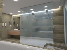 Walk-in shower Concept
