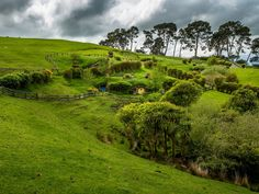Hobbiton in the Shire, Near Matamata, North Island, New Zealand