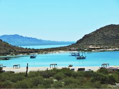 Sea of Cortez. Check out this blog for endless pictures of the beautiful Sea of Cortez.