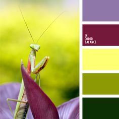 Farbpalette Nr. 136