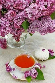 Lilacs & tea