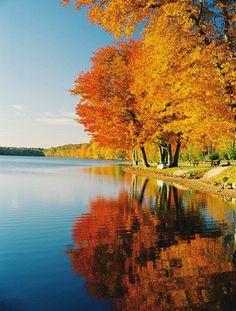 Fall, Weekend