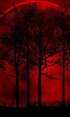 Blood moon.