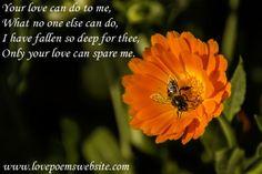 For more poems visit: www.lovepoemswebsite.com
