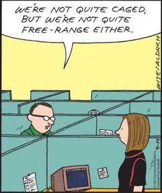 Comic strip cube office