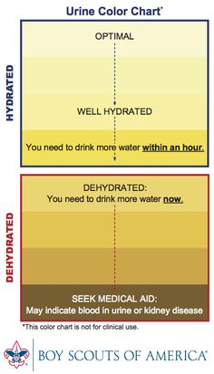 Urine color chart - Its very easy to become dehydrated on the Appalachian Trail. An experienced thru-hiker taught me to drink 3 gulps every 20 minutes and eat something every hour.  Since adopting that regimine, I've had no hydration related problems. Tip: adding some Propel to your water helps replace lost salts and minerals. You'll hike better.