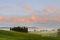 The tuscan countryside,one morning