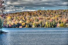 Color HDR photo of Autumn Forest North Shore  of an Adirondack lake