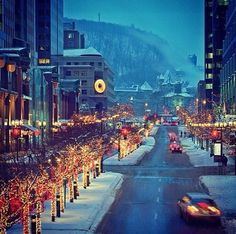 Montreal via Irene - McGill College Street at Christmas Time, most beautiful street at that time of year