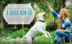 Check out this quick-and-easy how-to guide for using essential oils with animals.*