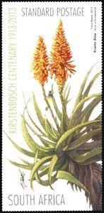 Stamp: Kantz Aloe (Aloe arborescens) (South Africa) (Centenary of the Kirstenbosch Botanic Garden) Mi:ZA 2202 Cactus, Flower Stamp, Postage Stamps, Botanical Gardens, Aloe, South Africa, Succulents, African, Flowers