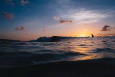 El amor es... hacerlo como a ella le gusta (la comida digo ). ------------------------ Esas mentes... a saber hacia donde fueron pillastres!. ------------------------ Fot.: KLundholm #bali #asia #indonesia #surf #surfer #surfing #surfstyle #amanecer #sunrise #playa #beach #naturaleza #nature #agua #water #oceano #ocean #mar #sea